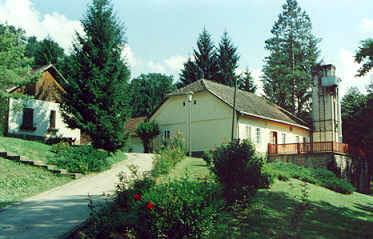 tes19991